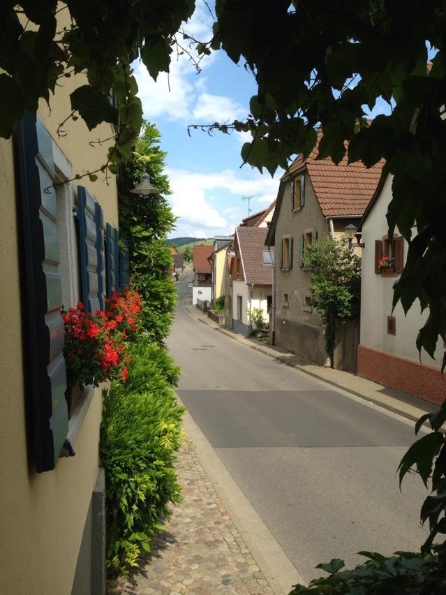 Schauinsland, Angel kissing spring, cherries, Strawberries, Gais Switzerland