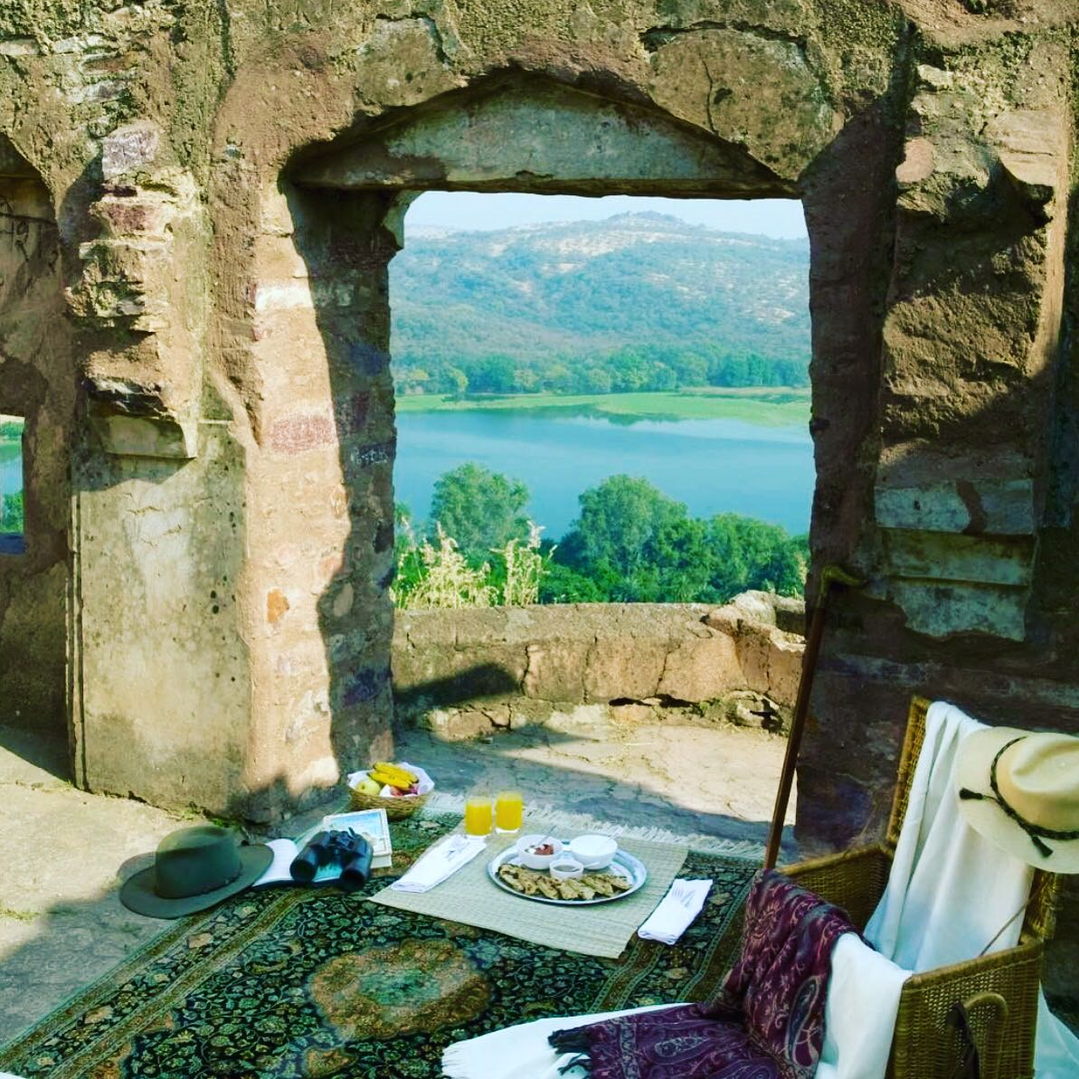 Aman-I-Khas; A haven where wildlife and 7-star luxury, embrace ...