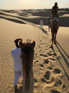Fateh Singh, luxurious tented camp, ships of the desert, The Serai Sujan