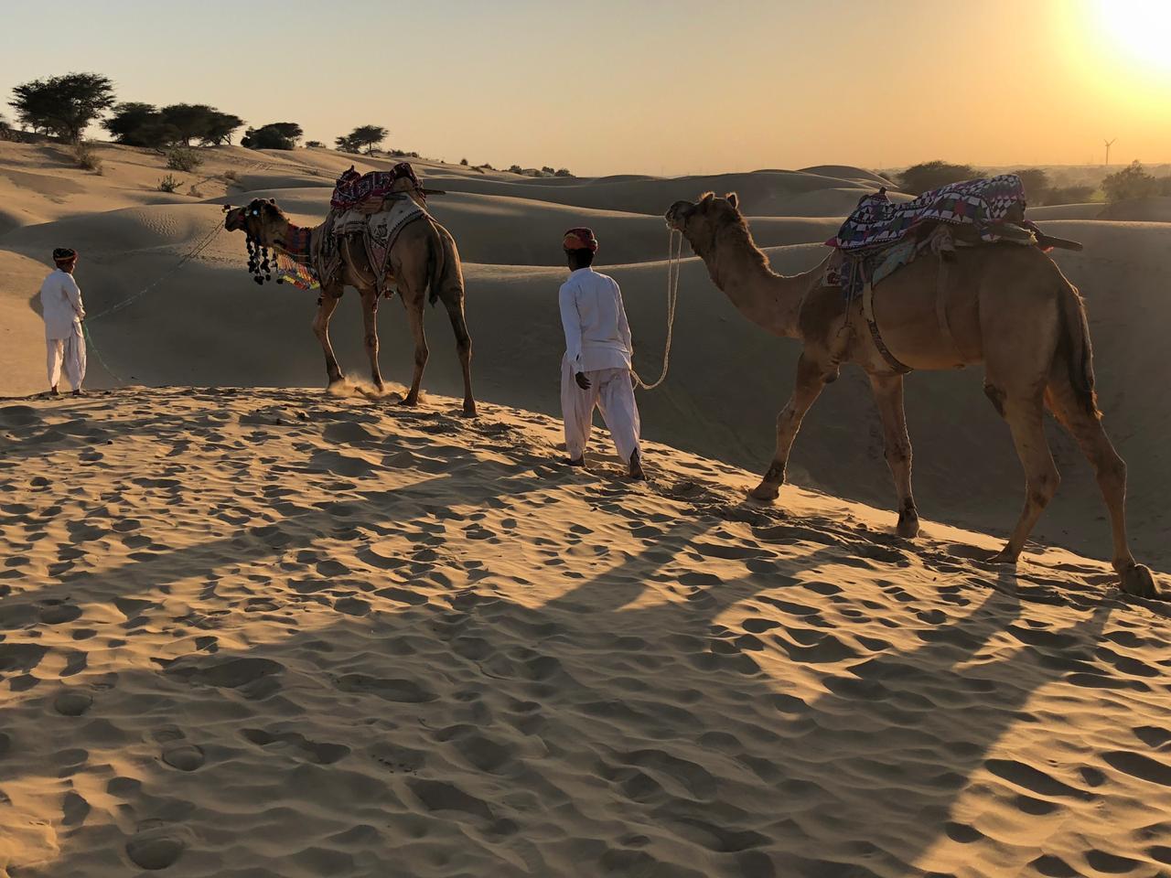 Camel ride at serai, serai sujan jaisalmer, sujan the serai jaisalmer, the serai jaisalmer, The Serai Sujan,