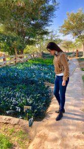Vegetable farm at serai, serai sujan jaisalmer, sujan the serai jaisalmer, the serai jaisalmer, The Serai Sujan,